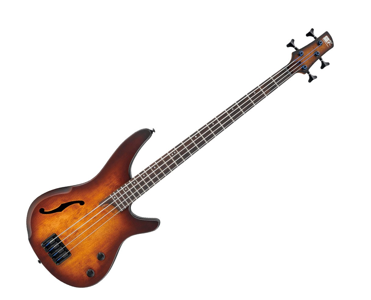 Ibanez SR Bass Workshop 4 String Electric Bass - Hollow Body - Dragon Eye Burst Flat