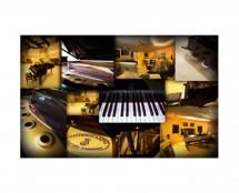 Best Service Galaxy II Steinway A Single Grand Piano (Proaudiostar.com)