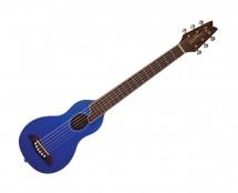 Washburn Rover Acoustic Guitar w/gigbag RO10STBLK