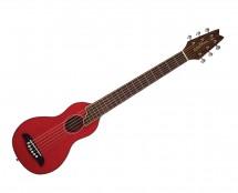 Washburn Rover Acoustic Guitar w/gigbag RO10STRK